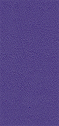 520053-NEW-PURPLE