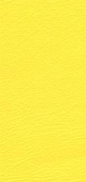 530452-SIGNAL-YELLOW